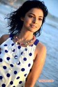 Ankita Shrivastav Film Actress New Albums 6950