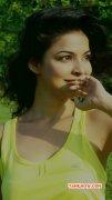 Ankita Shrivastav Movie Actress New Pics 9412