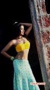 Tamil Actress Ankita Shrivastav Photo 6922