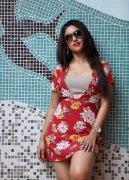 Actress Anu Emmanuel 2020 Image 9729