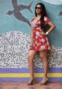 Anu Emmanuel Film Actress 2020 Image 5598