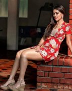 New Gallery Tamil Movie Actress Anu Emmanuel 7219