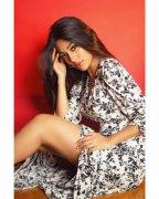 Recent Gallery Film Actress Anu Emmanuel 7390