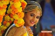 2017 Image Tamil Actress Anushka Shetty 3874