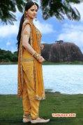 Anushka Shetty Film Actress Recent Pics 4918