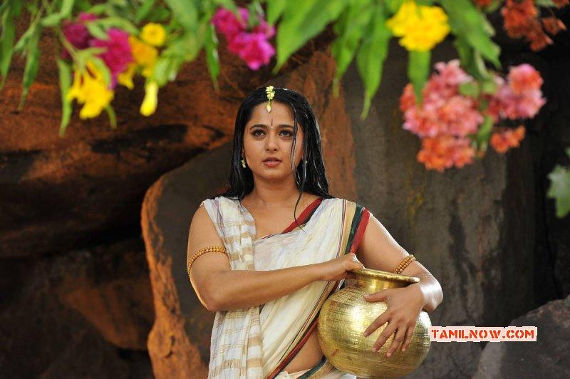 Tamil Actress Anushka Shetty Recent Pic 6602