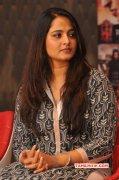 Anushka South Actress Recent Image 7860