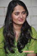Anushka South Actress Still 851