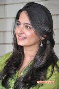 Indian Actress Anushka Latest Pictures 9044