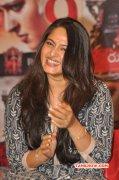 Oct 2015 Still Anushka Tamil Movie Actress 7062