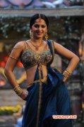 Wallpapers Actress Anushka 8721