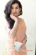 Recent Wallpaper Archana Veda South Actress 2897