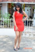 Actress At Vethu Paper Movie Launch 791