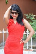 Indian Actress Archana New Image 9194