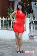 Movie Actress Archana Image 4722