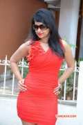 South Actress Archana Oct 2014 Picture 9363