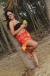 Asha Felsia 7052