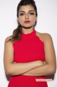 Latest Galleries Tamil Movie Actress Ashna Zaveri 4970