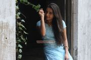 Actress Bhama 4601