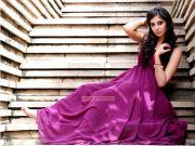 Bhanu Mehra Stills 4031