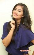Bhanu Sri Mehra Actress Nov 2014 Still 6130