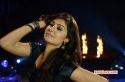 Bhanu Sri Mehra Film Actress Latest Stills 7156