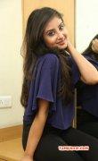 Cinema Actress Bhanu Sri Mehra New Pictures 6061