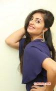 Images South Actress Bhanu Sri Mehra 9482