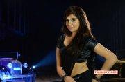 Nov 2014 Picture Heroine Bhanu Sri Mehra 4166