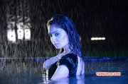 Recent Pic Indian Actress Bhanu Sri Mehra 963