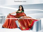 Actress Bhavana In Saree 1