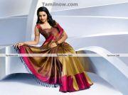 Actress Bhavana In Saree 2