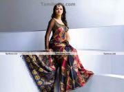 Actress Bhavana In Saree 3