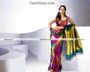 Actress Bhavana In Saree 6