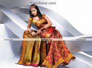 Actress Bhavana In Saree 8