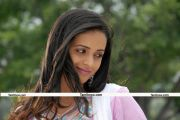 Actress Bhavana New Stills 012