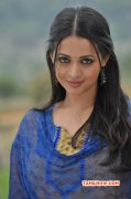 Bhavana Cinema Actress Latest Image 8672