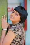 Bhavana Exclusive Photos 12