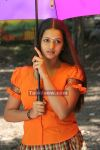Bhavana Exclusive Photos2