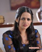 Bhavana Heroine New Stills 5470