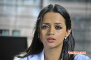Feb 2015 Pictures Cinema Actress Bhavana 1540