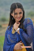 Feb 2015 Wallpaper Bhavana Heroine 6253