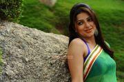 Bhumika Chawla 5431