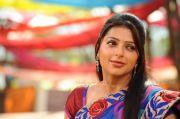 Bhumika Chawla Photos 4978