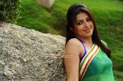 Tamil Actress Bhumika Chawla Stills 5476