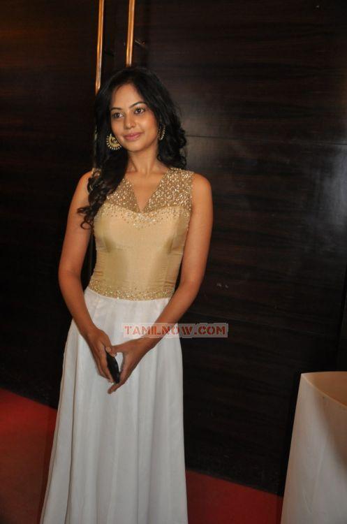 Actress Bindhu Madhavi 2981