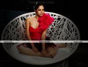 Bindhu Madhavi Photo 2