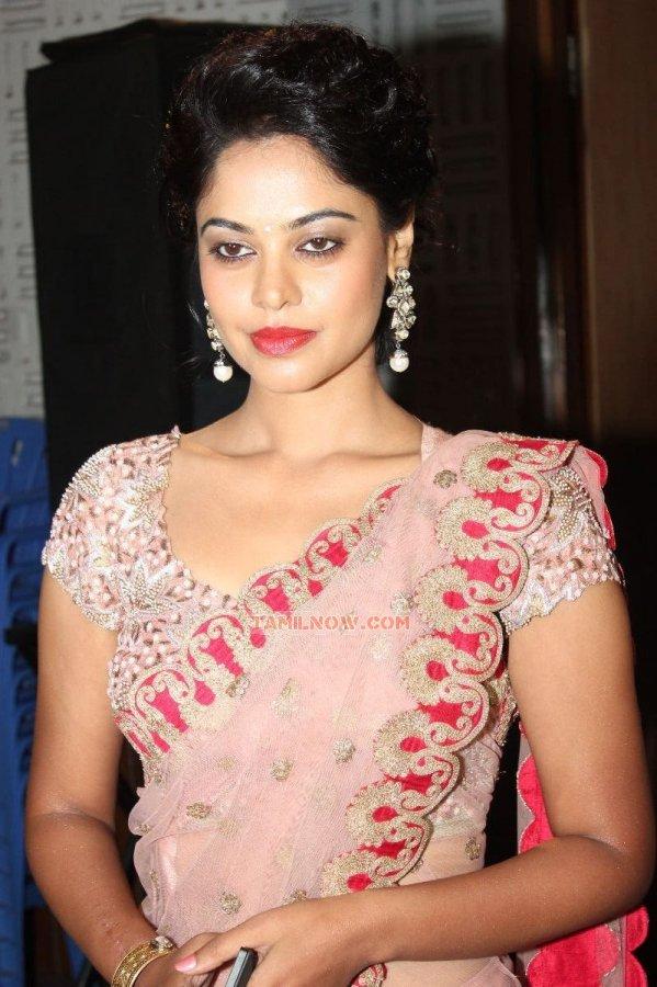 Bindu Madhavi Stills 3040