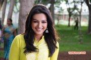 2014 Images Catherine Tresa Indian Actress 381