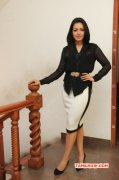 Catherine Tresa Cinema Actress New Stills 8204
